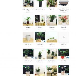 Thiết kế web bán hàng mẫu 35